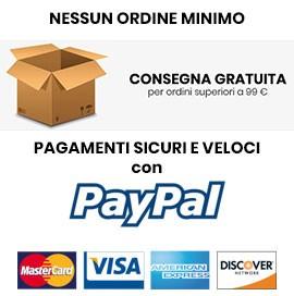 Consegna gratuita e pagamenti veloci
